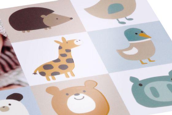 Babykarten Online Gestalten Cewe